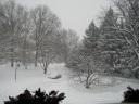 winter-2008-8